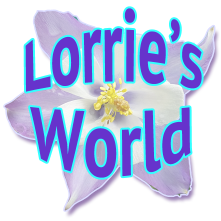 Welcome to Lorries World